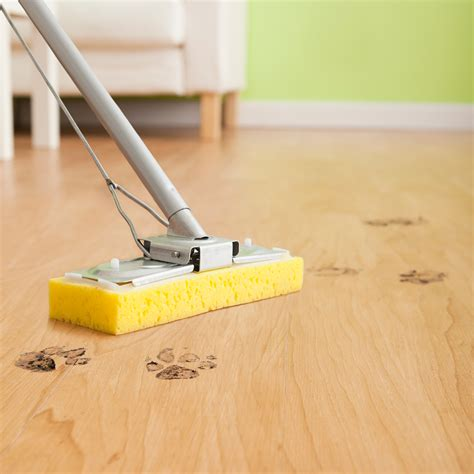 7 Techniques For Cleaning Your Floors by Cleaning Tips For Floors Keep Your Floors Sparkling