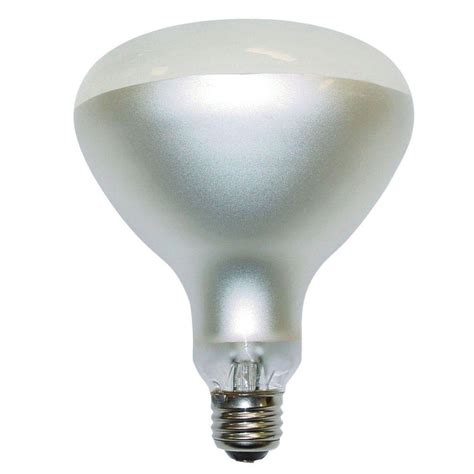 300 Watt Light Bulb by Philips 300 Watt Incandescent Br40 Swimming Pool Frosted