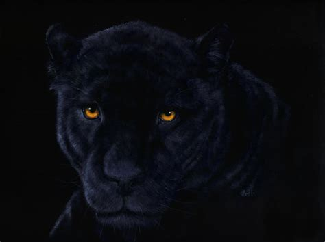 Black Panthers Also Search For Black Panther Original For Sale By Nudge1 On Deviantart