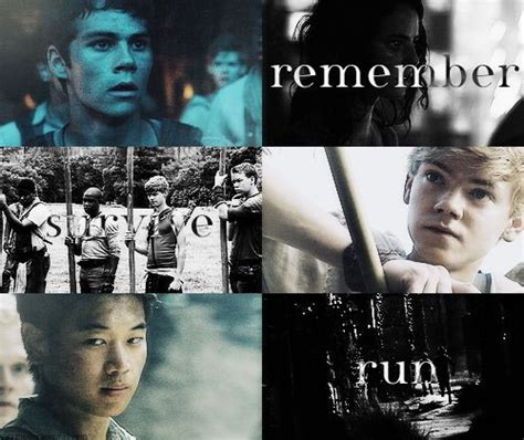 theme quotes in maze runner maze runner theme profile perfection