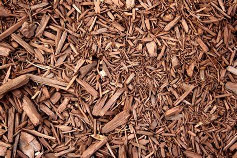 Paper From Woodchips - brown wood chip mulch texture picture free photograph