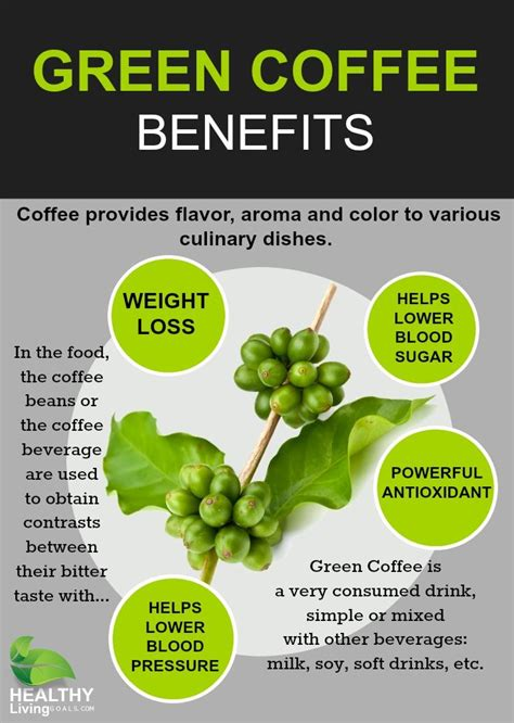 Handle Green Coffee Bean Extract best 25 organic coffee beans ideas on press