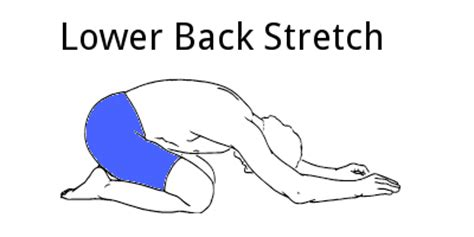lower back stretches in bed 5 lower back stretches to help reduce pain
