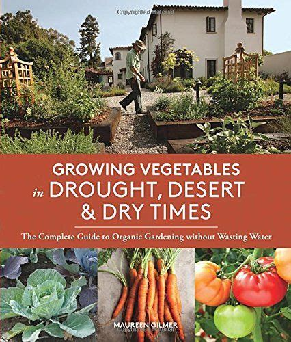 Best Time To Water Vegetable Garden by 5 Cost Effective Organic Gardening Tricks For A Rewarding