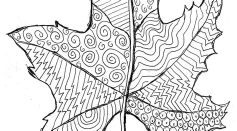 leaf pattern with lines grovecrest art fall leaf line drawing