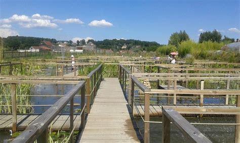 les jardins d eau photo de les jardins d eau carsac