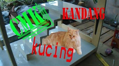 cara membuat oralit buat kucing cara membuat kandang kucing dari kayu minimalis kucing
