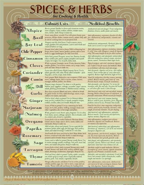herb chart healing herbs spices kitchen chart spices herbs and charts
