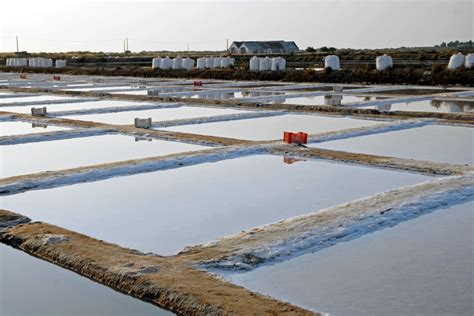 Promo Atlantic Portugal Sea Salt 250 Gram marisol sea salt artisan salt production marisol marisol