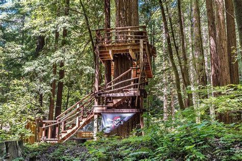 sonoma county cabin    pirate treehouse