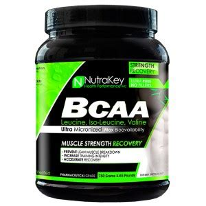 supplement with bcaas and carnitine nutrakey bcaa branched chain amino acids bcaas amino