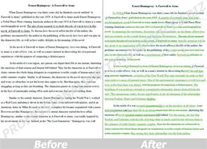 Professional Essay Writer by Professional Writing Service Business Analysis And Design Essay