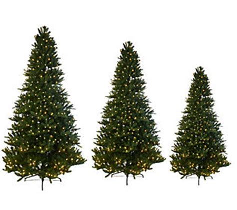 wwwqvccomprelit christmas trees mr wisconsin fir pre lit led tree with 5 year lmw