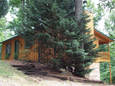 pet cabin pet friendly cabins in pigeon forge pet friendly cabins