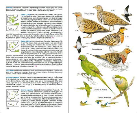 aves de espaa aves de espa 241 a lynx edicions