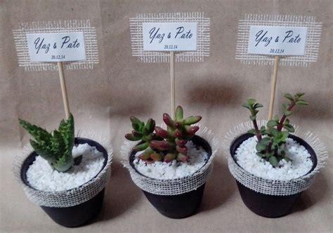 souvenirs cactus maipu recuerdos de matrimonio en ceramica blanca recuerdos matrimonio bautizo plantas suculentas y cactus
