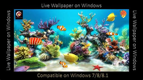 live wallpaper windows 7 youtube how to add quot live wallpaper on windows 10 8 1 8 7 xp