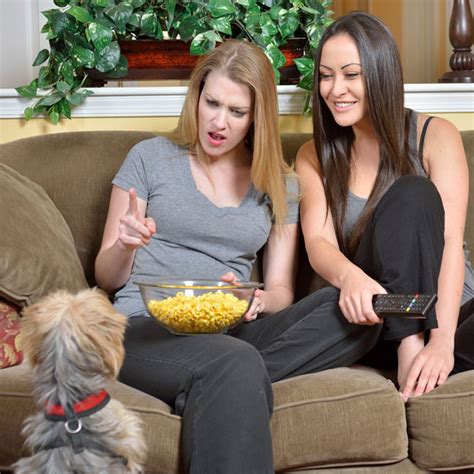 dogs eat popcorn can dogs eat popcorn