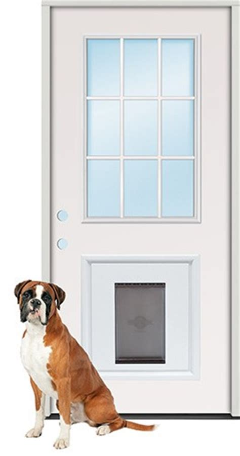 Pet Door Insert by Patio Door Sizes Opening 2017 2018 Best Cars Reviews