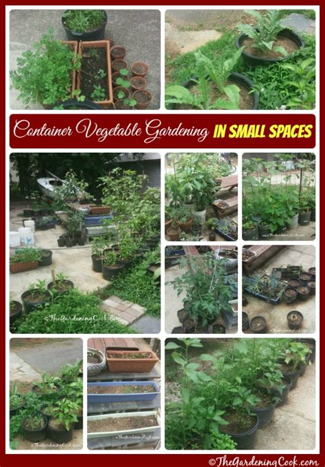 small space container gardens container vegetable gardens for small spaces the