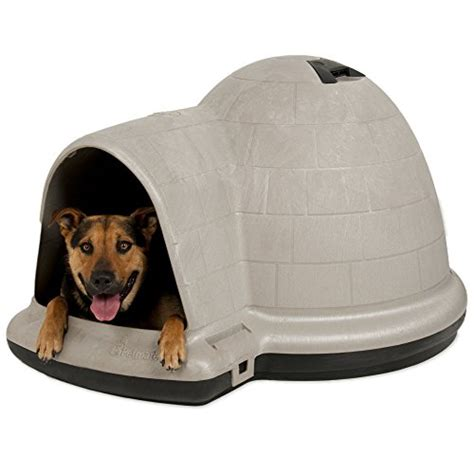 petmate dog house with microban extra large petmate indigo dog house with microban affordablepetstock