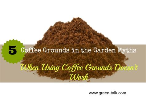 Coffee Grounds In The Garden by Coffee Grounds In The Garden Top 5 Myths Green Talk 174