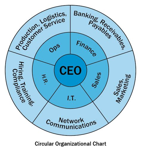 circular organizational chart template you shouldn t be your own second in command