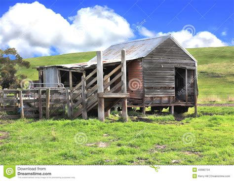 rundown shed and cattle yards stock photo image