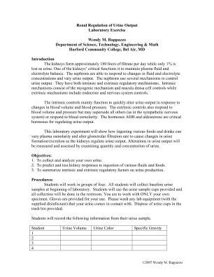 Urinary System Essay by Urinary System Essay Urinary System Essay Draft Ferguson A P Mf Liamr How The