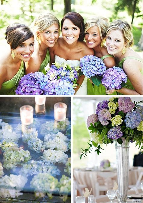 Hydrangea Wedding Flowers by Hydrangea Wedding Flowers