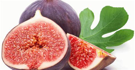 khasiat buah ara erabaru
