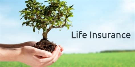 Things To Consider When You Get A Life Insurance Quote Mm Indicator
