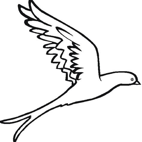 coloring pages of birds flying free bird coloring pages