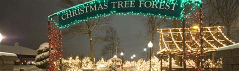 fairgrounds festival of lights buffalo ny buffalo raceway general info fairgrounds