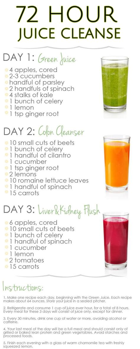 Cleanse And Detox Guidelines by 10 Amazing Juice Diet Recipes For Weight Loss Cleanse
