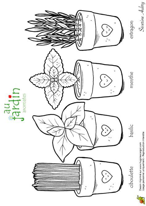 Coloriage D 233 Couverte Les Aromates Du Jardin