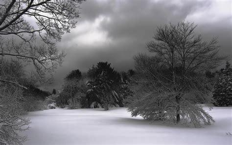 imagenes de paisajes de invierno paisajes en invierno fotos de nieve r 237 os y lagos