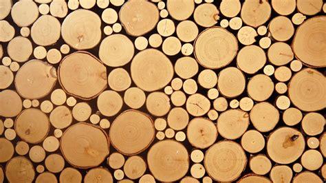 Minimalism Images nature texture wood circle photography minimalism