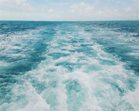 glass bottom boat tours in key west fl key west glass bottom boats fl top tips before you go
