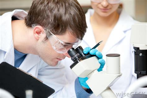 Photo Lab Technician by What Are The Different Laboratory Technician