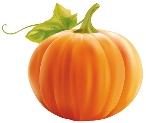 pumpkin clipart pumpkin clip 2 cliparting