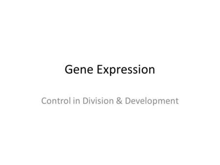section 11 1 control of gene expression chapter 11 objectives section 1 control of gene expression