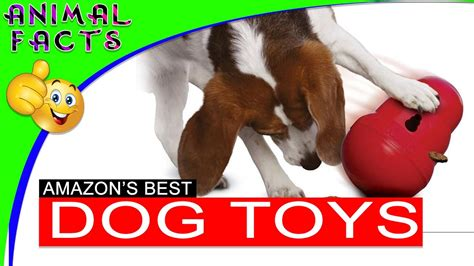 best puppy toys to keep them busy 5 best interactive toys on dogs 101 funnydog tv