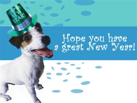 new year for dogs top 10 new year s resolutions how to incorporate your
