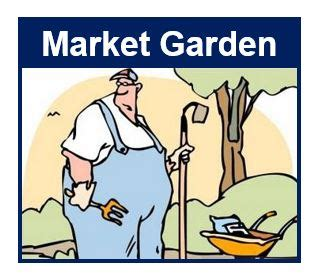 what is the meaning of backyard what is a market garden definition and meaning market