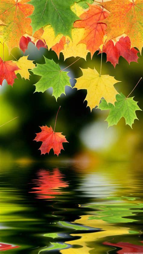 imagenes de otoño para fondo de pantalla gratis comienza el oto 241 o primer d 237 a del oto 241 o 2017 161 bienvenido