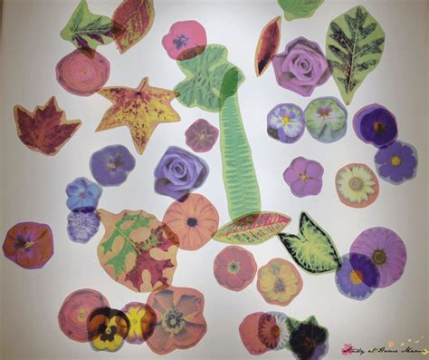 can you laminate flower petals 7 ideas for with flowers study at home