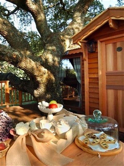 la casa sull albero viterbo tree vita sugli alberi