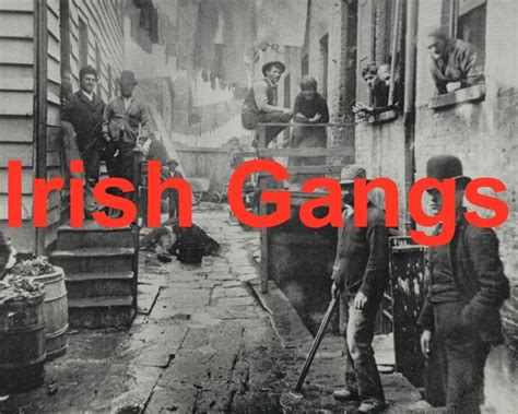 tales 3b last call in s bend the gangs in america