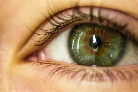 green eye color what color of do you prefer on the opposite gender